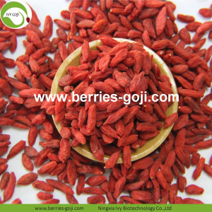 For Sale Anti Tumor Healthy Common Goji Berry