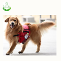 Factory sales dog backpack harness