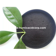 China for Humic Acid Powder LEONARDITE POWDER HUMIC ACID supply to Papua New Guinea Factory