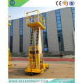 14m Electric Hydraulic Aluminum Double Masts Vertical Lift