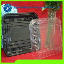 Plastic Thermoformed Blister Manufacturer Tray