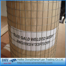 PVC coated bird cage welded wire mesh roll