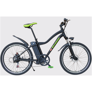 Frame alloy electric bicycle