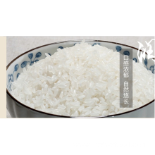 High Quality for Medium Grain Rice best quality cheap long grain basmati rice supply to Eritrea Supplier