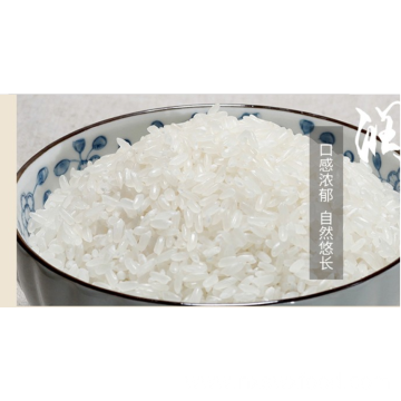 China Gold Supplier for for Short Grain Rice best quality cheap long grain basmati rice supply to Saint Lucia Supplier