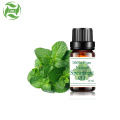 Good price 100% natural spearmint oil