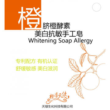 Customized for Cosmetic Whitening Skin Hand Soap Orange enzyme Hand Soap supply to Algeria Importers