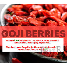 Low pesticide residue wolfberry for sale/fresh goji berries