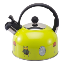 2.5L color painting Teakettle yellow color