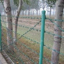 PVC Double Twist Barbed Wire