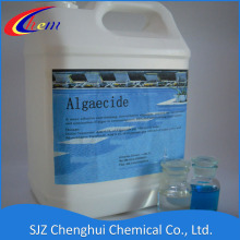 China for Flocculant Polyacrylamide swimming pool algae control export to United States Minor Outlying Islands Factories