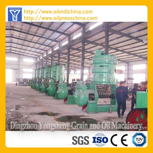 Sunflower Oil Expeller Machinery