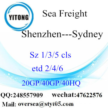 Shenzhen Port Sea Freight Shipping To Sydney
