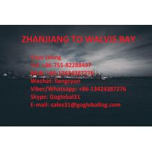 Personlized Products for Shipping To Africa Zhanjiang Zhanjiang Sea Freight Port to Namibia Walvis Bay supply to Spain Manufacturer