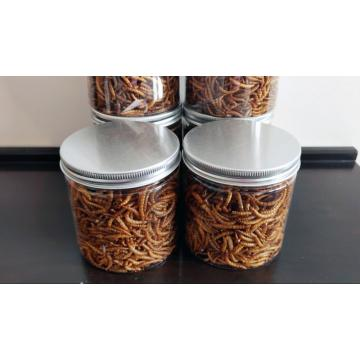high protein mealworm for parrot