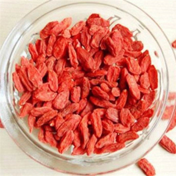 Nutrition Dried Goji Berry