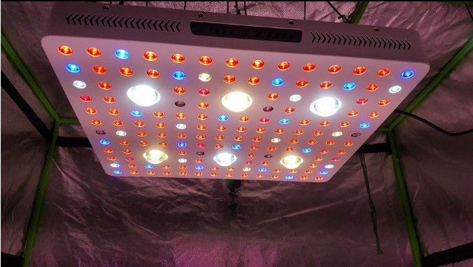 3000W COB Grow Light