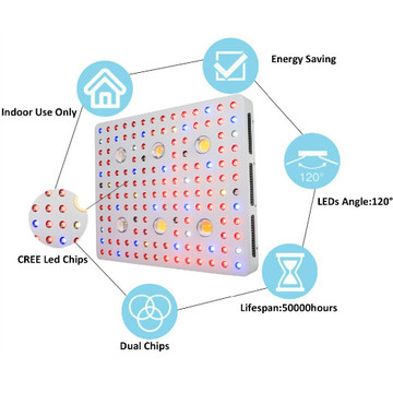 COB LED Grow Light Light Cbx3590 cxa2530 Hydroponic