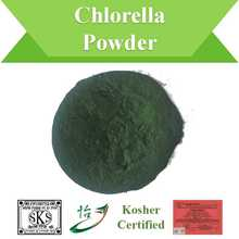 Kosher Certified Nutritional Supplement Chlorella Powder