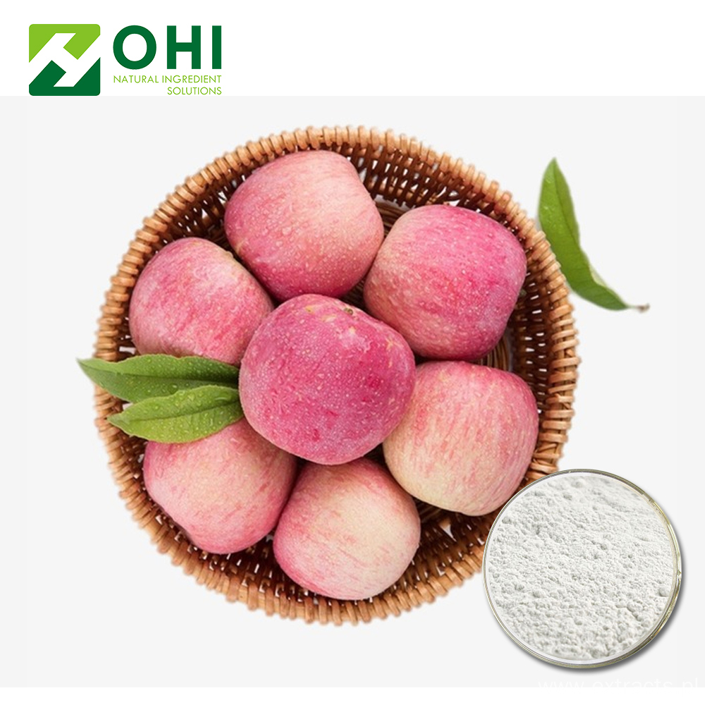 Apple Extract Polyphenols Powder 50~80% UV-VIS