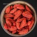 Organic Goji Berry wolfberry OEM acceptable