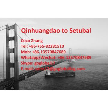 Hebei Qinhuangdao Sea Freight to Portugal Setubal