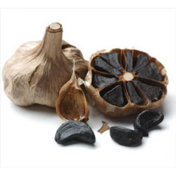 Black Garlic Benefit in the Daily Diet