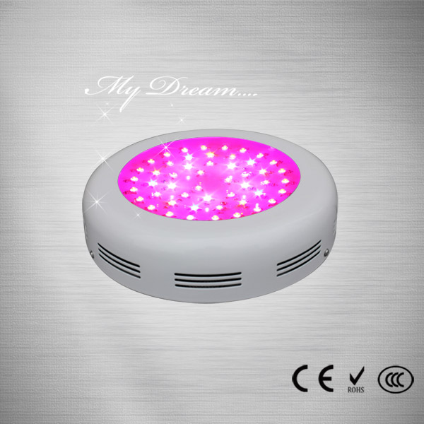 LED 74.3W Red and blue grow light
