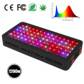 Hydroponic Systems Indoor Greenhouse LED kweeklampen