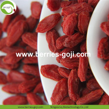 Buy Natural Nutrition Dried Fruit Lycium