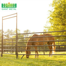 Customized 4inch Garden Plastic Composite horse Fence