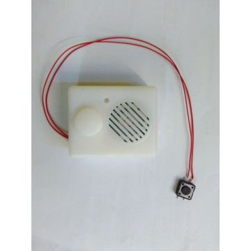 With push button Voice Recording Box, Recordable Sound Box, Music Box