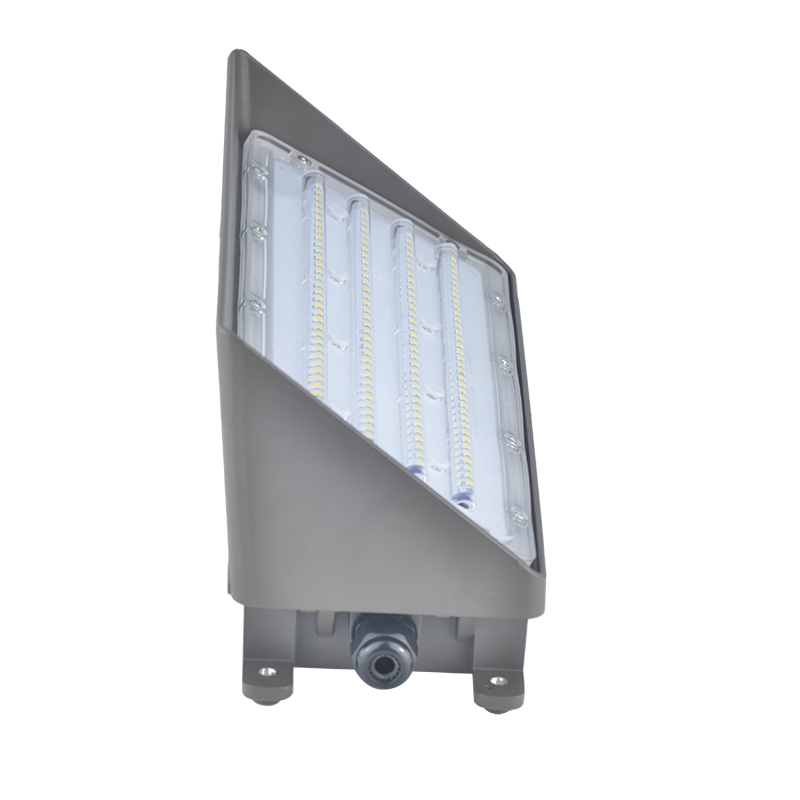 Led Wall Mount Light Fixture (6)