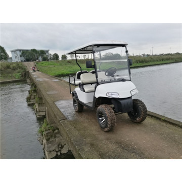 4 seats custom electric golf carts for sale