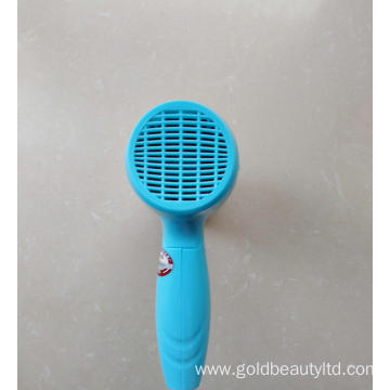 High Grade Professional Mini Hair Dryer for Tourist