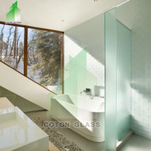 Tempered Glass Shower Door