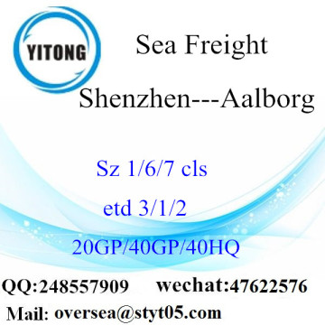 Shenzhen Port Sea Freight Shipping To  Aalborg