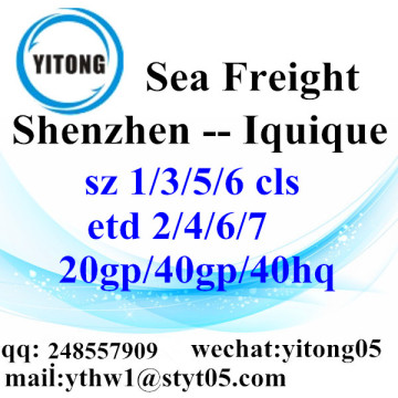 Shenzhen sea freight shipping agent to Iquique