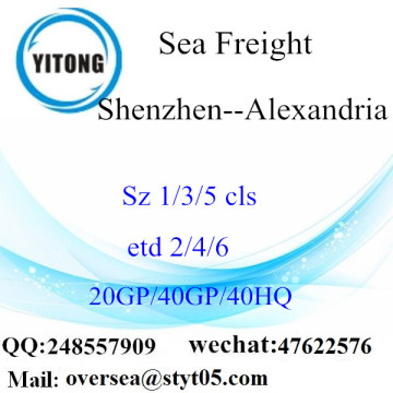 Shenzhen Port Sea Freight Shipping To Alexandria