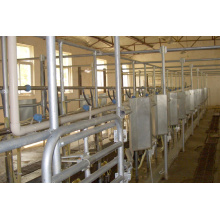 Automatic fishbone milking parlor