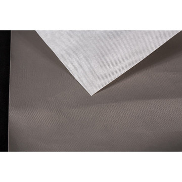 Polypropylene coated Polyethlene film