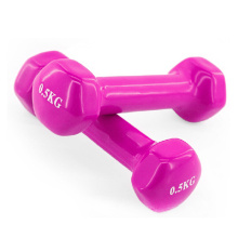 Best quality and factory for Vinyl Dumbbells 0.5 KG Vinyl Dumbbell export to Djibouti Supplier