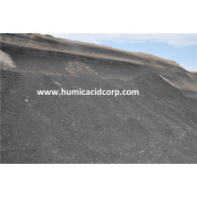Good Quality for Humic Acid Granule High purity leonardite powder export to Guatemala Factory