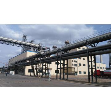 5000t/a Soy Protein Isolate Production Line