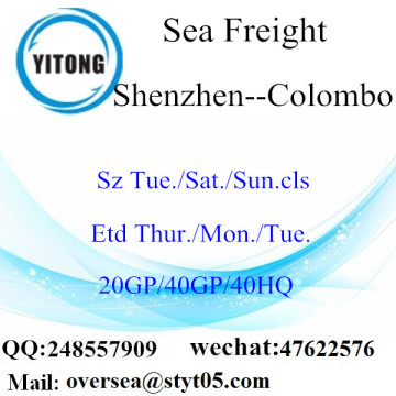 Shenzhen Port Sea Freight Shipping To Colombo