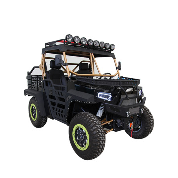 Buggy 1000c 4x4 UTV QUAD BIKE