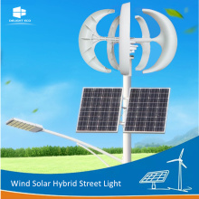 Manufacturer of for Wind Solar Hybrid Street Light,Wind Generator Solar Street Light,Wind Mill Solar Street Light Manufacturers and Suppliers in China DELIGHT DE-WS02 Generator Wind Solar LED Street Lamp supply to Togo Exporter