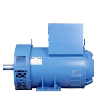 Marine Lower Voltage Synchronous Generator