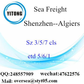 Shenzhen Port LCL Consolidation To Algiers