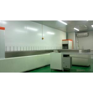 Fully Automatic painting line